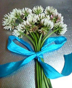 母の日の 花束 (*^^*)